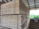 Laubschnittholz, Besäumtes Holz, Hobelware  Zu Verkaufen Rumänien - Bretter, Dielen, Linde