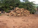 Firewood - Cashew Firewood for Mushroom Beds