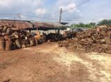 Kaufen Oder Verkaufen  Brennholz Hartholz  - Brennholz