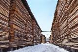 Hardwood  Sawn Timber - Lumber - Planed Timber Beech - Beech/Oak Planks 28 mm