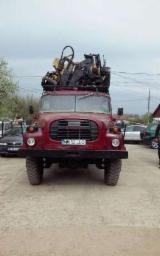 Servicii Forestiere Romania - Prestari exploatari lucrari forestiere padure fasonat tras transport