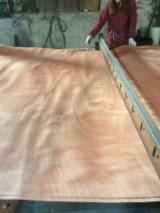 Veneer Supplies Network - Wholesale Hardwood Veneer And Exotic Veneer - Okoume Face/Back Rotary Cut Veneer
