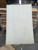 木皮供应网络 - 批发硬木木皮和热带木木皮 - 白杨树, 旋切
