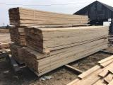 Poland Sawn Timber - Pine Planks 25 mm Fresh Sawn