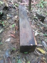 België levering - Square Logs, Ebony
