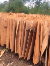 Furnierhandel - Laub Und Tropenholzfurnier - Robinie , Eukalyptus, Rundschälfurnier