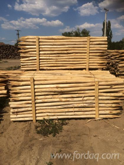Vend piquets tuteurs acacia hongrie - Tuteur bois brico depot ...
