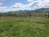 Wood for sale - Register on Fordaq to see wood offers - Spruce  Fences - Screens from Romania