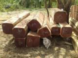 Wälder Und Rundholz Nordamerika - 4-seitig Sägegestreiftes Rundholz, Balsam , ISO-9000