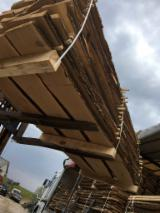 Lithuania Supplies - Oak Unedged Planks Natural Moisture or Kiln Dried 8-10%