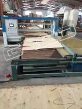 Woodworking Machinery China - Plywood paving machine