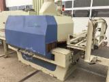 Netherlands Supplies - RAIMANN Cross cutting and multi ripsaw line, type ProfiRip KR 650 M + MaxiCut 800es