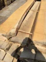 Unedged Hardwood Timber - Tilia (Lime Tree) Loose Planks, AD, 50 mm thick