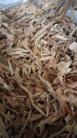 null - Birch Wood Chips from Used Wood