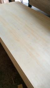 Kaufen Und Verkaufen Von Sperrholz - Fordaq - Natursperrholz, Eukalyptus