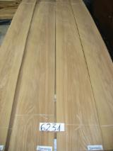 Sliced Veneer Offers from Italy - American Red Elm Veneer, Flat cut - plain, 0.55 mm thick