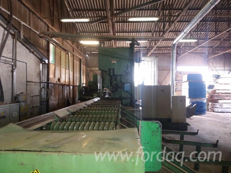 New-Primultini--1100-Elettronic-Controll--Sawmill-For-Sale