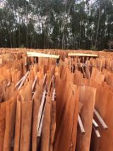 Trgovina Na Veliko Tvrdog Furnira I Egzotični Furnir - Bagrem, Eucalyptus, Ljušteno