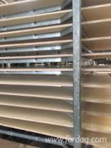 Plywood - Offer for Natural Plywood, 4-6 mm