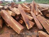 Hardwood  Logs Demands - Buying Kosso Square Logs