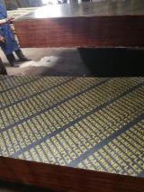 Compensato Filmato - Vendo Compensato Filmato (Nero) Pioppo 12, 15, 16, 17, 18, 20, 21 mm Cina