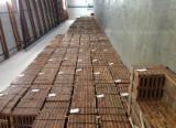 Macaranduba FSC Deck Tiles / Garden Tile 24X24