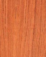 Laubschnittholz, Besäumtes Holz, Hobelware  Zu Verkaufen Großbritannien - Bretter, Dielen, Bubinga , FSC