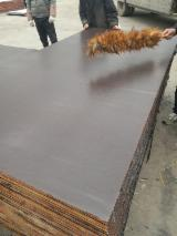 Wholesale  Film Faced Plywood Brown Film - Shuttering Film Faced Plywood 5 times usage