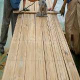 Nadelschnittholz, Besäumtes Holz Chinesische Kiefer Pinus Tabulaeformis - Chinesische Kiefer