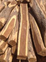 Forest And Logs For Sale - DESDE 2O cm Ipe  Poles Colombia