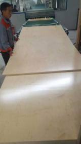null - China 18mm UV Birch Plywood for USA