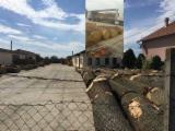 Serbien  Vorräte - Furnierholz, Messerfurnierstämme, Eiche