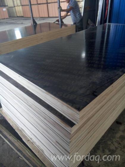 Poplar-Film-Faced-Plywood-9-25