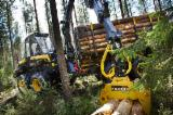 Forest & Harvesting Equipment - New Ponsse Buffalo Processor Romania