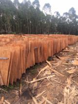 Eucalyptus Rotary Cut Veneer - Acacia and Eucalyptus rotary cut Veneer, 1.4- 2.4 mm thick