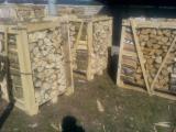 Firewood, Pellets And Residues - Birch / Hornbeam / Oak Firewood