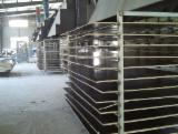 Buy or Sell Film Faced Plywood - Construction Black Film Faced Plywood, Poplar Core, 8-20 mm