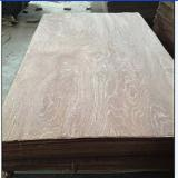 Rotary Cut Veneer For Sale - Natural Keruing (Gurjan) Rotary Cut Veneer, A grade, 0.15-0.8 mm thick
