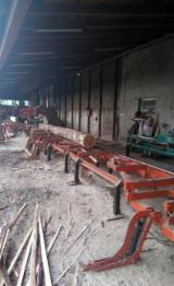 Sawmill Wood Mizer 旧 波兰