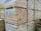 Laubschnittholz, Besäumtes Holz, Hobelware  Zu Verkaufen Polen - Buchen Kantholzer