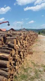 Romania Supplies - Acacia Firewood/Woodlogs Not Cleaved