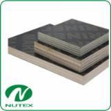 Plăci HPL - Vand Plăci HPL (stratificate La Presiuni Înalte) 2-35 mm Antiderapant