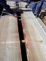 Netherlands Unedged Timber - Boules - Larch Boules, 25-52 mm thick