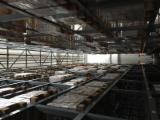 Massivholzböden Zu Verkaufen Italien - Teak, Parkett (Nut- Und Federbretter)