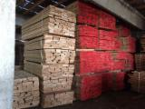 Laubschnittholz, Besäumtes Holz, Hobelware  Zu Verkaufen Bulgarien - Bretter, Dielen, Buche, Thermisch Behandelt - Thermoholz