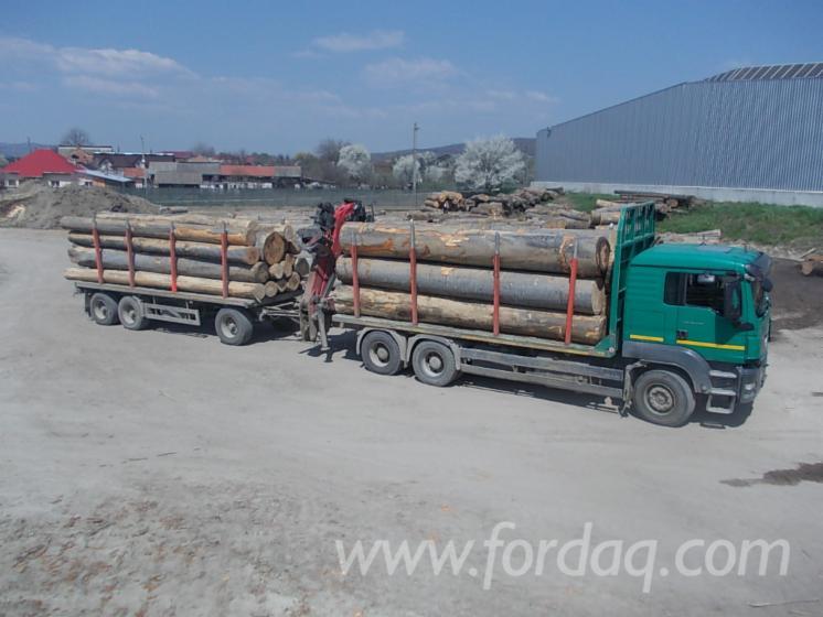 Used-MAN-TGS-440-2008-Longlog-Truck