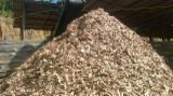 Brandhout - Resthout - Eucalyptus Houtspaanders Van De Zaagmolen