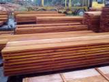 Hardwood  Sawn Timber - Lumber - Planed Timber - Quality Fiji Mahogany Rough Sawn Lumber AD