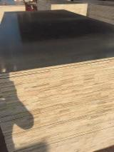 China Supplies - 15-25mm Black FJ film faced Plywood for construction