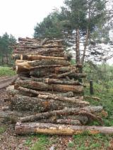 Firewood - 7 cm Oak Firewood from Spain, Bizkaia Y La Rioja